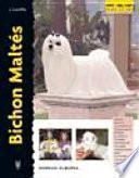 libro Bichon Maltés