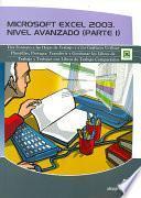 libro Microsoft Excel 2003