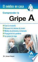 libro Comprender La Gripe A