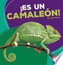 libro ¡es Un Camaleón!