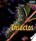 libro Insectos