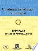 libro Tepezalá Estado De Aguascalientes. Cuaderno Estadístico Municipal 1996