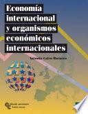 libro Economía Internacional Y Organismos Económicos Internacionales